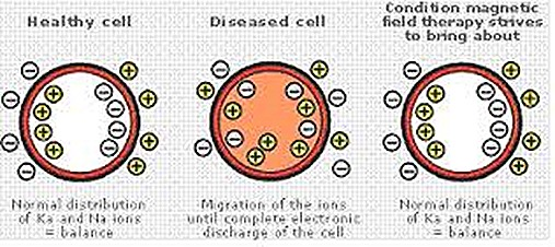 pemf health cell