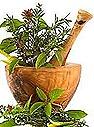 PEMF healing herbs