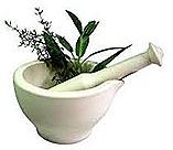 pemf8000 herbs heal