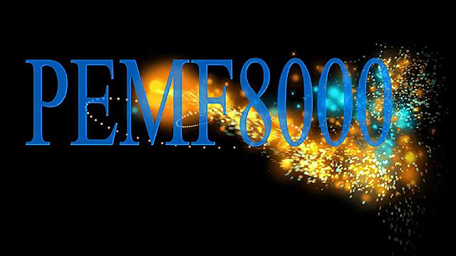 PEMF8000 RECHARGE